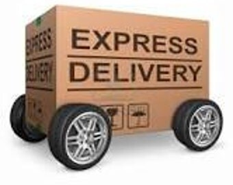 Express UPS delivery US