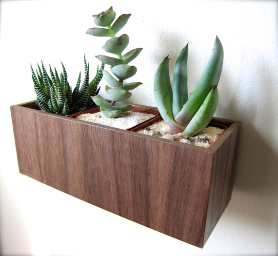 "Wall Planter (8""), Hanging Planter, Plant Holder, in sustainable WALNUT wood, roughly 8""x3""x3"", air plants sold separately"
