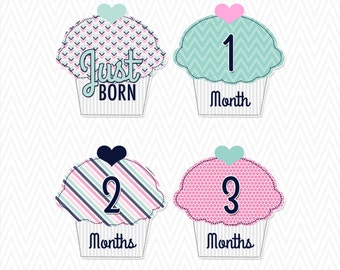 Cupcake Monthly Milestone Stickers/ Iron Ons