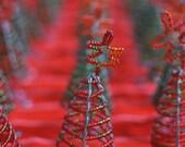 Mini Christmas Tree from Kenya