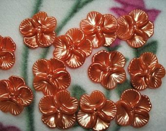 5 beads, flower, 2,7 x2, 7cm (248)