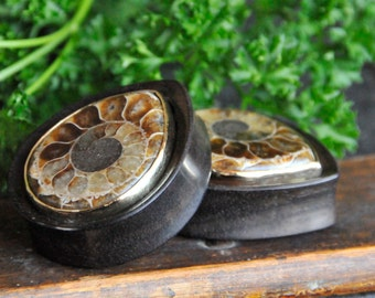 Ammonite Inlay on Teardrops