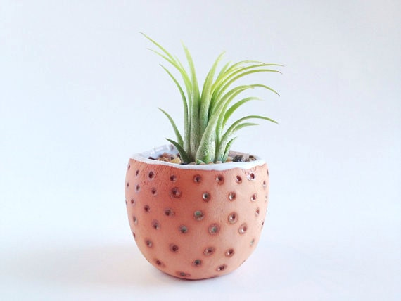 Small Terracotta Planter - Ceramics and Pottery - Pottery Planter