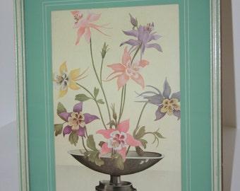 Vintage framed Columbine flower portrait 14 3/4 x 11 3/4 inches