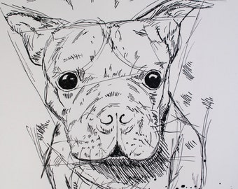 Rufus the Boston Terrier, digital copy