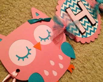 Owl Happy Birthday Banner (Pink, turquoise chevron with brown shadow)