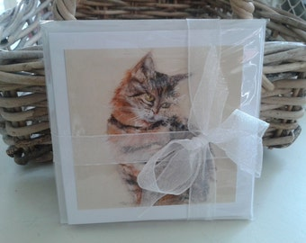 Cats Small Greetings Card Pack (4)