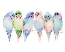 Budgies Parakeet Bird T - SHIRT, Sweatshirt, Fabric, Tote Bag  Item no. 212