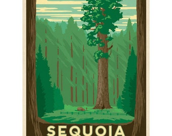Sequoia National Park California Wall Decal #42262