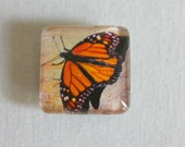 Magnet: Monarch Butterfly
