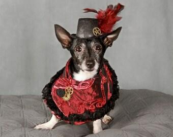 Custom Steampunk Dog Cape with Hat