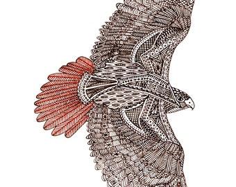 Pen & Ink Hawk Print
