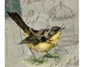 Digital Download French Vintage Bird,ACEO, Digital Collage,Large Images, French Digital Gift Tags, Transfer Images, Bird, Vintage Digital