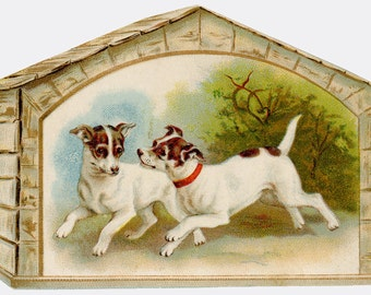 2 DOGS PLAYING - Terriers - Vintage Color Image DOWNLOAD - Antique print