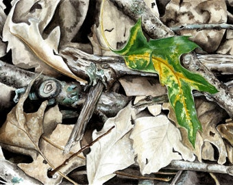 Watercolor Leaves and Twigs Nature Art Watercolors