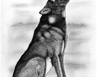Popular items for wolves art on etsy for Lupo disegno a matita