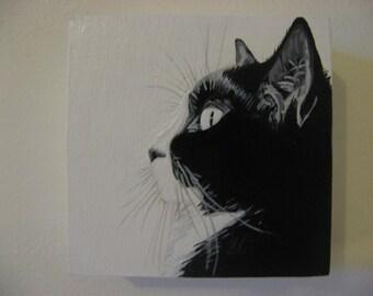 Custom pet portraits, made to order! (4 x 4)