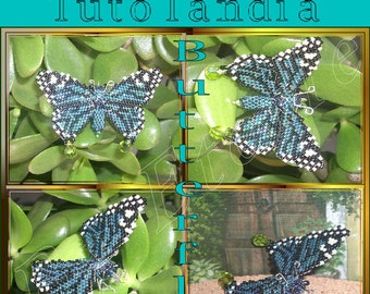 butterfly pattern in italian