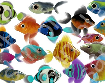 17 Individual Fish Clip Art Digital Files.  300 DPI   6.8 x 6.8 Inch