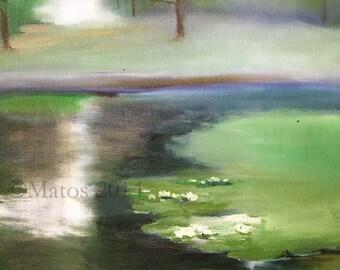 Waterlilies on Spring Lake