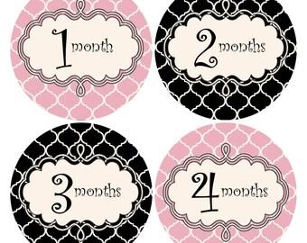 Monthly Baby Stickers Baby Monthly Stickers Baby 12 Month Sticker Pink and Black Stickers Monthly Baby Shower Gift Photo Prop