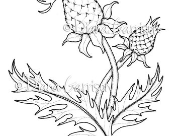 Thistle Digi Digital Stamp