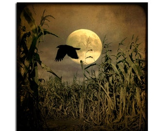 Crow, Full Moon, Havest Moon, October Night, Autumn Raven - Full Moon Rising