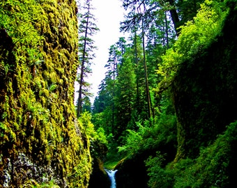 Waterfall Woodland Green Forest Fine Art Photography Enchanted Eagle Creek Trail Oregon Greeting Card SOUL HAVEN by Spinning Castle