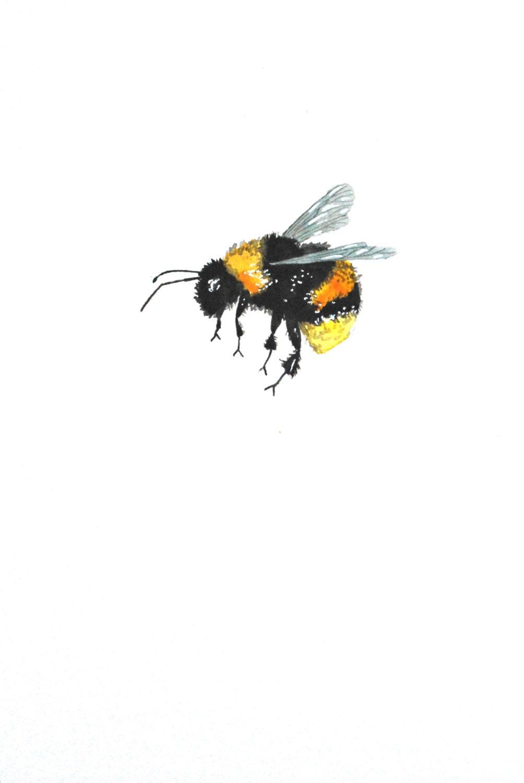 Watercolor Painting Original Painting Bumble Bee
