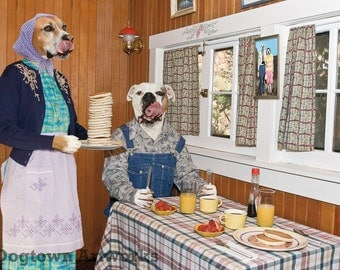 Pancakes, large original photograph of funny boxer dogs wearing clothes in kitchen with pancakes