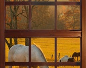 Wall mural window, self adhesive, Cades Cove window vertical view-large 24x36 - free US shipping