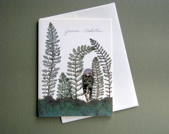 Yarrow plant with creeping cat, pressed plant, botanical greeting card, no.1037