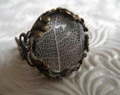White Skeleton Leaf Bronze Victorian Filigree Ring-Burgundy Background,Symbolizes Tranquility,Serenity-Nature's Art-Gifts Under 20 Dollars