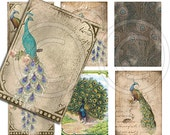 Antique Peacocks Digital Collage Sheet for scrapbooking altered art aceo