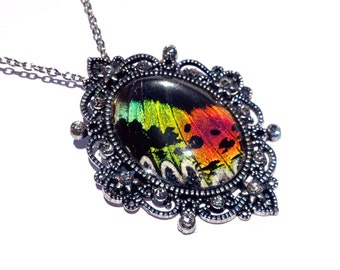 Real Butterfly Jewelry, Sunset Moth Wing Pendant Necklace, Glam Statement Necklace, Organic Jewelry