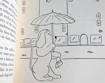 James Thurber Illustrations How to Raise a Dog Kinney Honeycutt 1950s