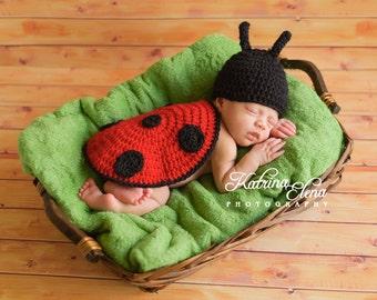 Baby Ladybug Photo Prop