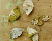 Fabric moths - set of 5 / recycled / brooch / textile art / made to order