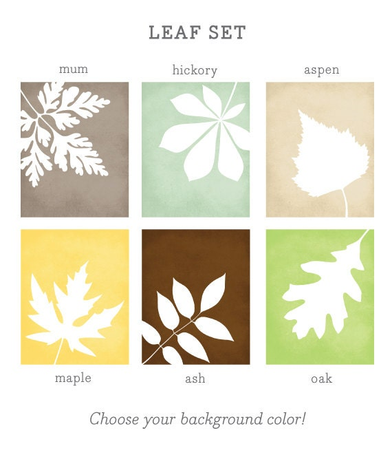 Leaf Set Art Print / Botanical Poster Art -  Choose from Six Leaf Species / 8x10