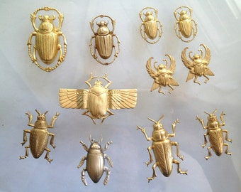Brass Beetle Collection (11 pc)