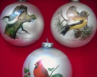 Christmas Ornaments Bird Collection by Corning with Original Box 1975