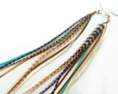 Tan and Turquoise Long Feather Earrings