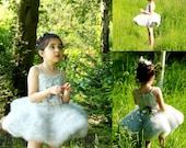 Pale Dove Grey Ballerina Tutu Dress - Toddler/Kids Christmas Outfit - Ballerina Princess Party Dress Up