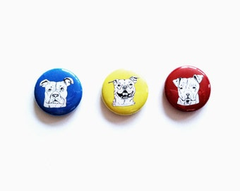 Pit bull magnets in primary colors