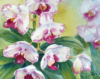 Orchid Painting Original 4x6 Tropical Flower Watercolor Art by Janet Zeh