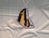 Real Butterfly Wings between glass Jewelry Giant King Swallowtail Butterfly Hand Soldered Christmas Birthday Gift Statement Necklaces