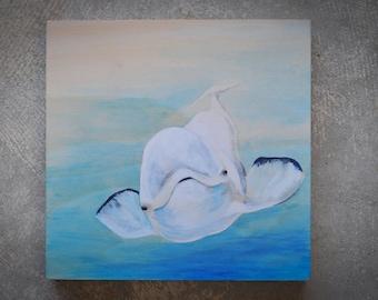 White Beluga whale *Sale*