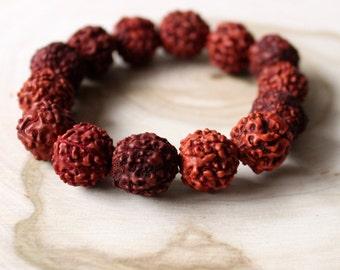 Eye of the Hunter // Rudraksha Seed Bracelet  // *Jewels of the Seeker* Collection