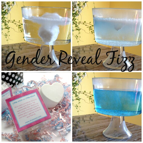 Gender Reveal Party Little Miss or Little Man Reveal by ...  Gender