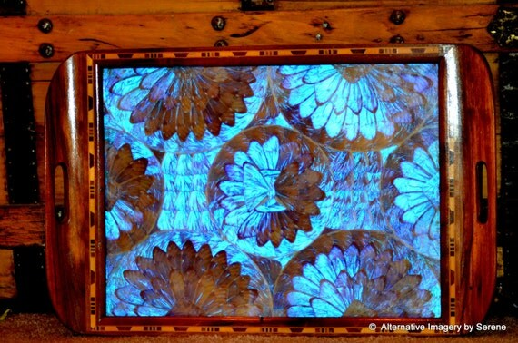 Blue Morpho Rainforest Butterfly Exotic Hardwood Marquetry Work Vintage Brazilian Dresser Tray